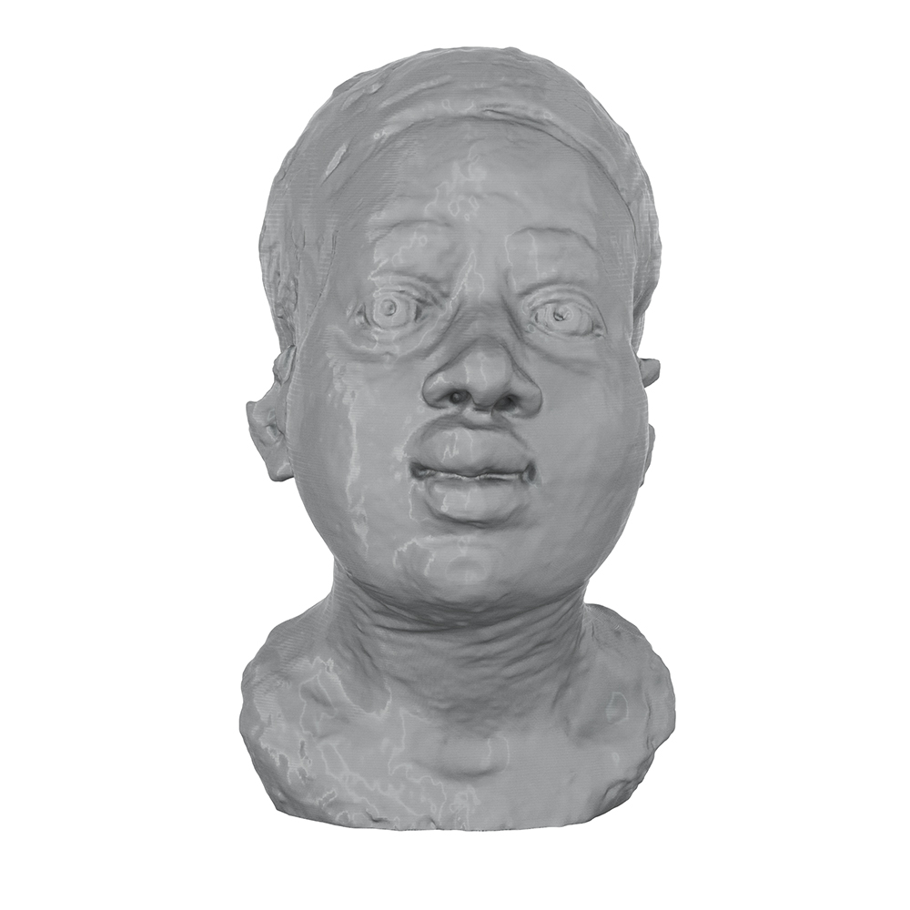 3D Printed African Woman's Head