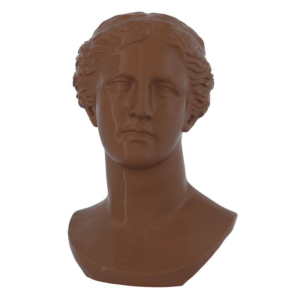 3D Printed Head of Juno