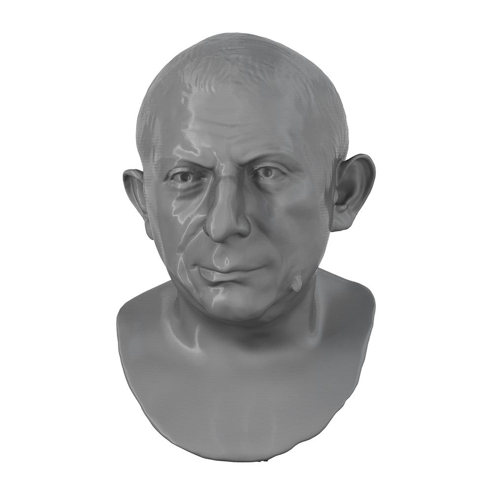 3D Printed Portrait of Lucius Caecilius Iucundus