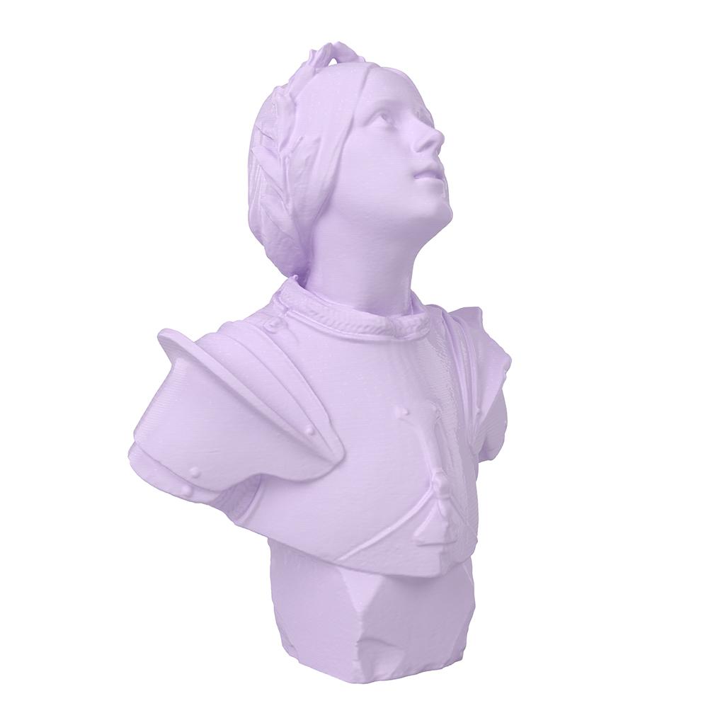3D Printed Joan of Arc Bust