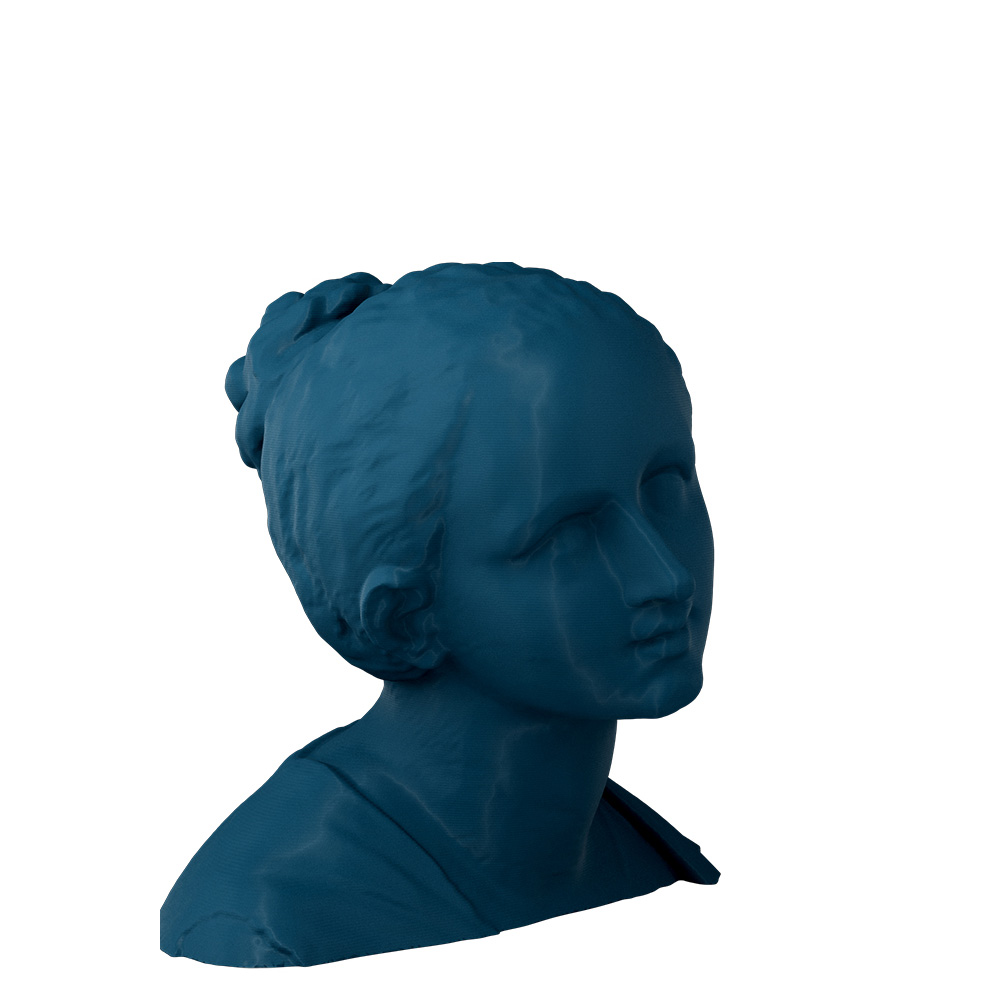 3D Printed Head of a Woman
