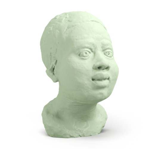 3D Printed African Woman