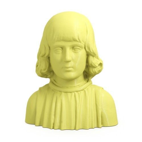 3D Printed Young Aragonese Man